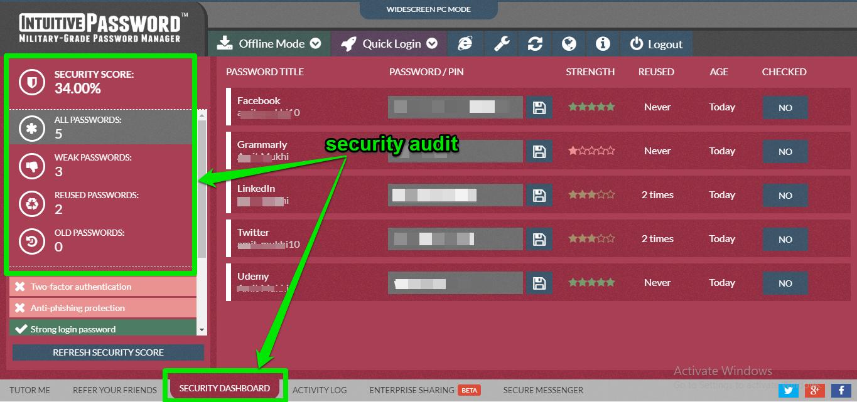 intuitive password audit report